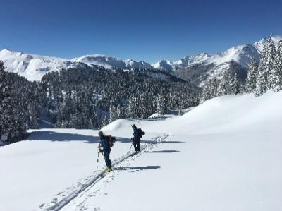 Backcountry Ski Rentals - NOW OPEN!