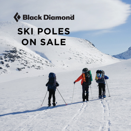 BD ski pole sale
